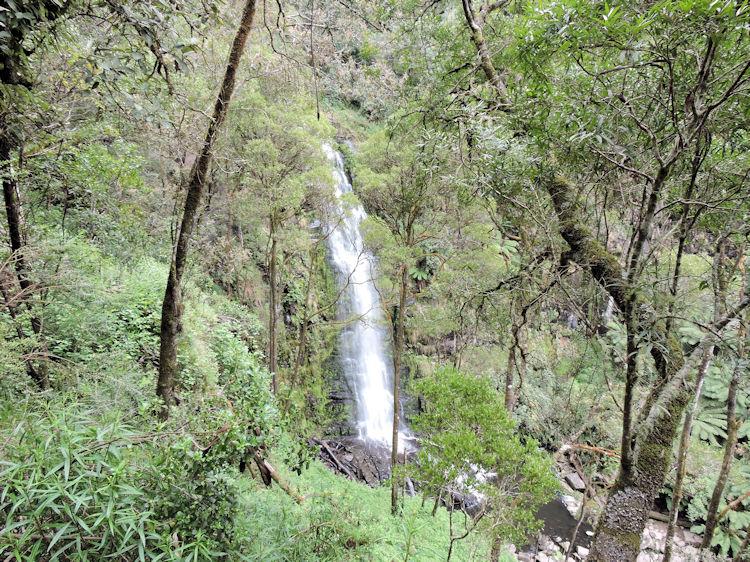 Erskine Falls Walk