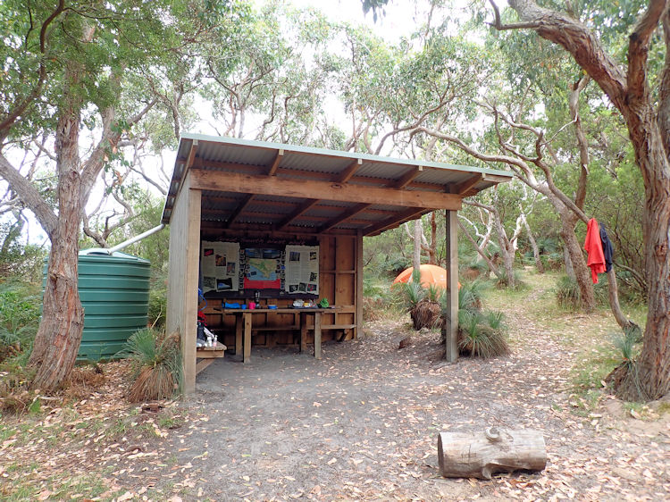 Great South West Walk: Section 12 -Tarragal Camp to The Springs Camp