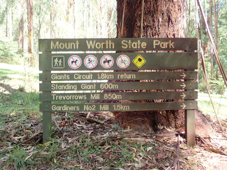 Mount Worth State Park hiking trails