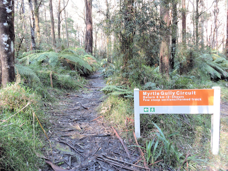 Myrtle Gully Circuit sign post