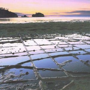 Tasman National Park Map